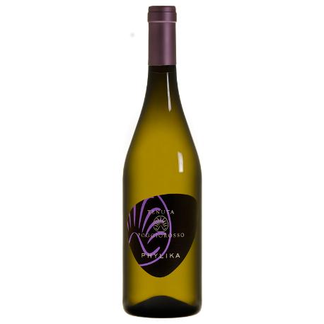 phylica vino bianco della poggio rosso populonia